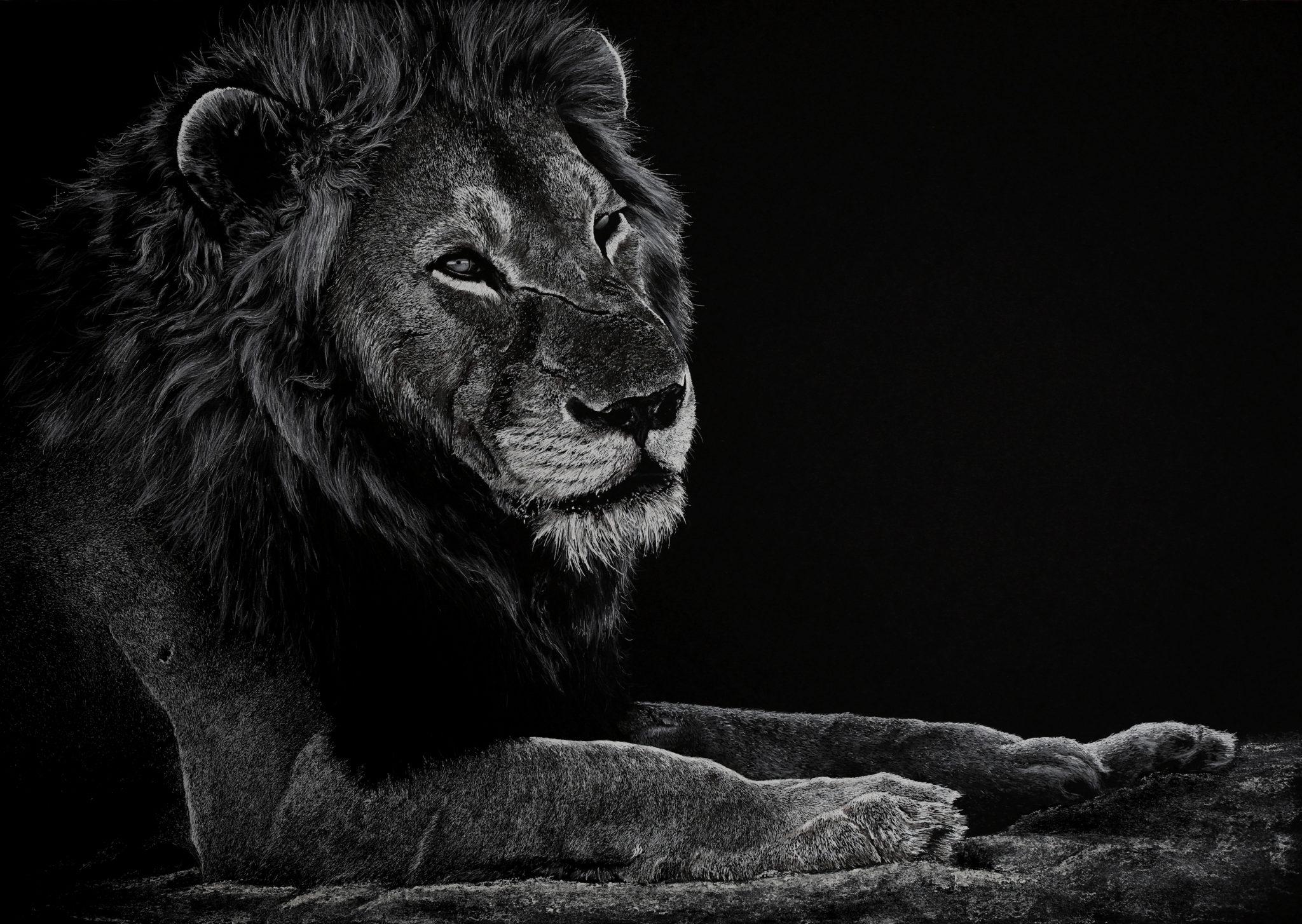 """Not a king, a lion"""