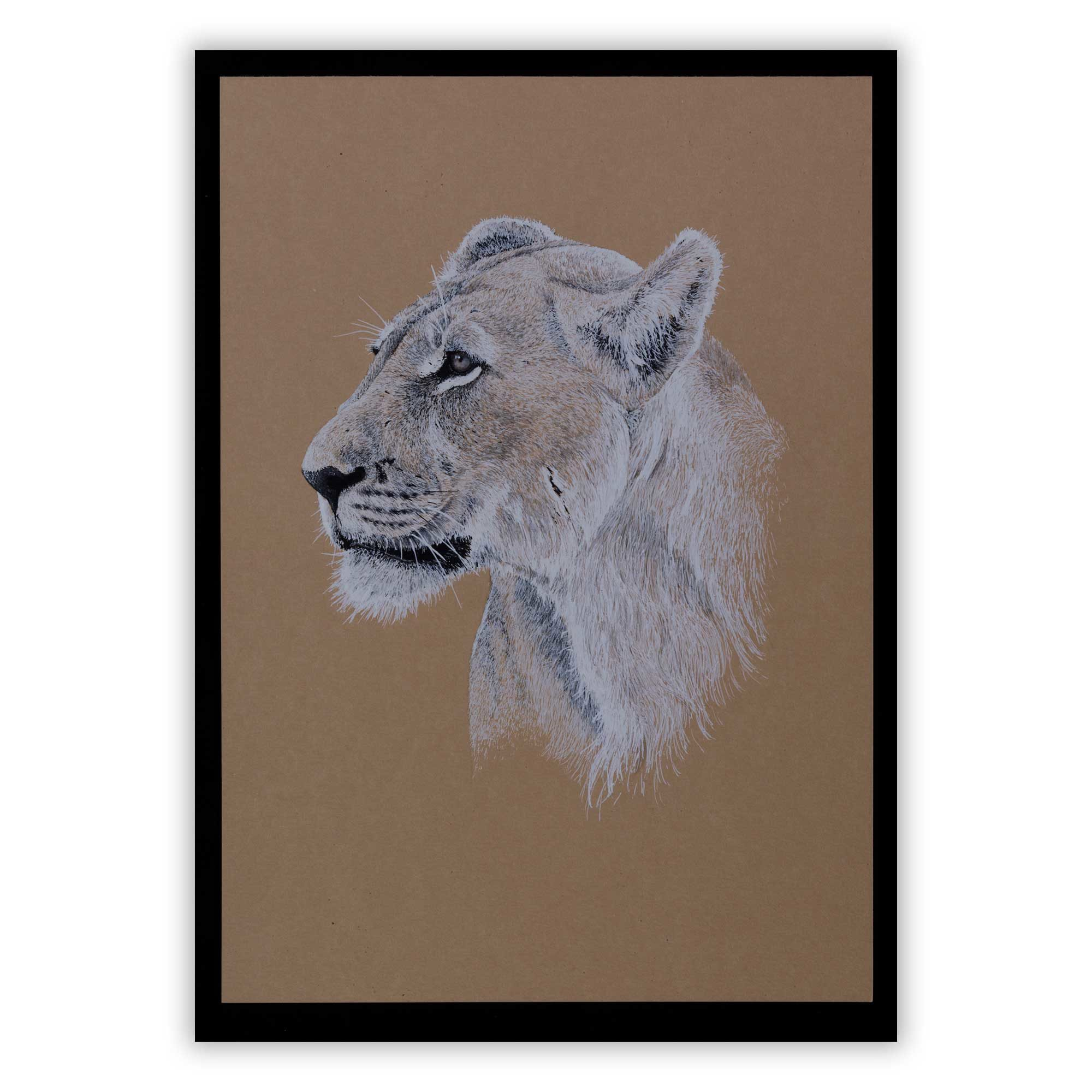 """Majestic"" Limited edition fine art print"